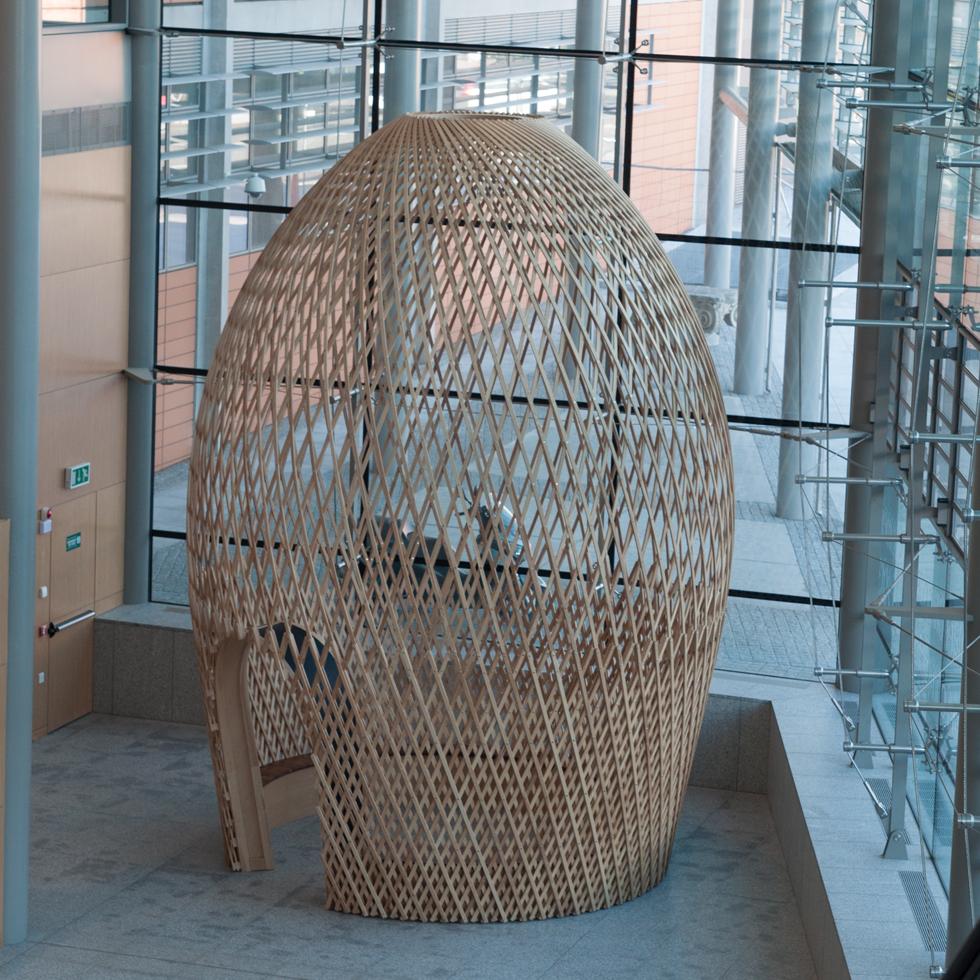 DE BRUIR Mater Hospital Cocoon model 17