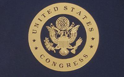 DE BRUIR recognised in Congress within #WearingIrish